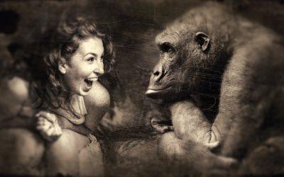 Humor als Flirt mit der Identität